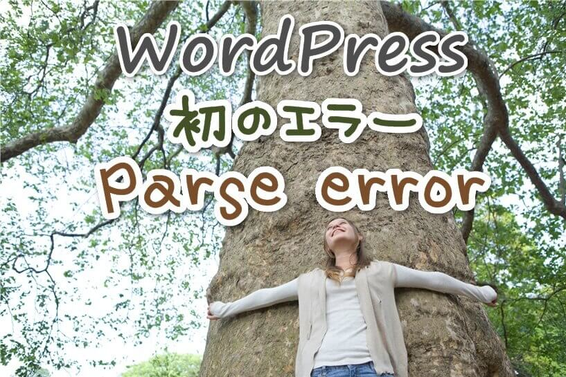 WordPress更新で画面が真っ白!エラー原因:全角・閉じ忘れ・競合…。解決法と復元方法