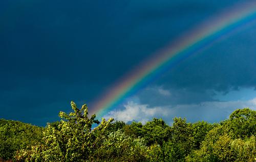 ブルーライトの入った虹