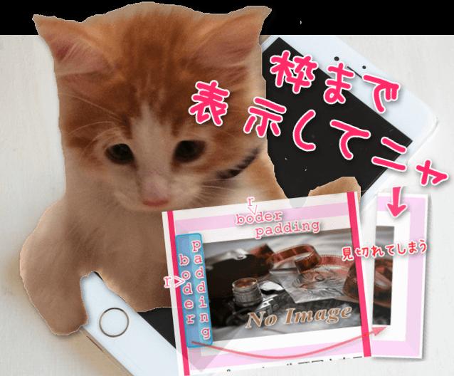 画像の枠まで表示して、スマホから猫