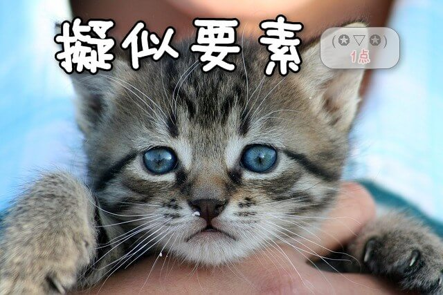 優先順位1点、擬似要素:哀愁漂う癒し系仔猫