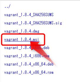 vagrant_1.8.4.msi