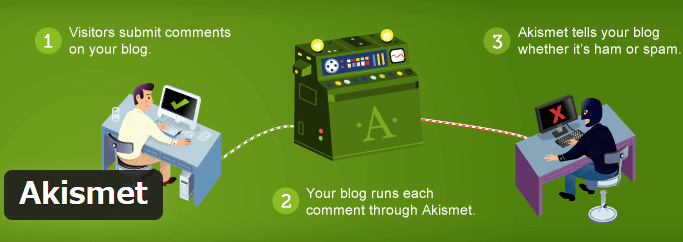 Akismet Anti-Spam詳細を表示画面