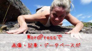 WordPressでファイルをアップロード!サイズが大きくてエラーが出る時の対処法